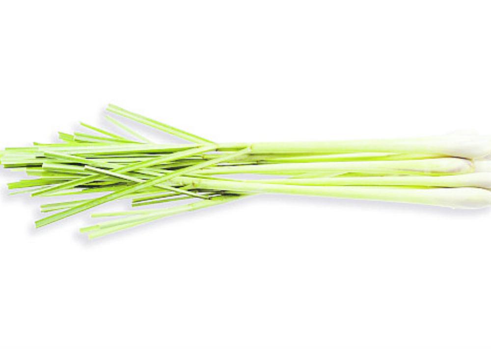 Limoncillo (lemongrass): Funciona muy bien para ayudar al sistema linfático a eliminar toxinas. Echar un par de gotas puro en una jarra de agua te ayuda a detoxificar y, en el aire, es bueno para liberar las emociones tóxicas o negativas. (Shutterstock)