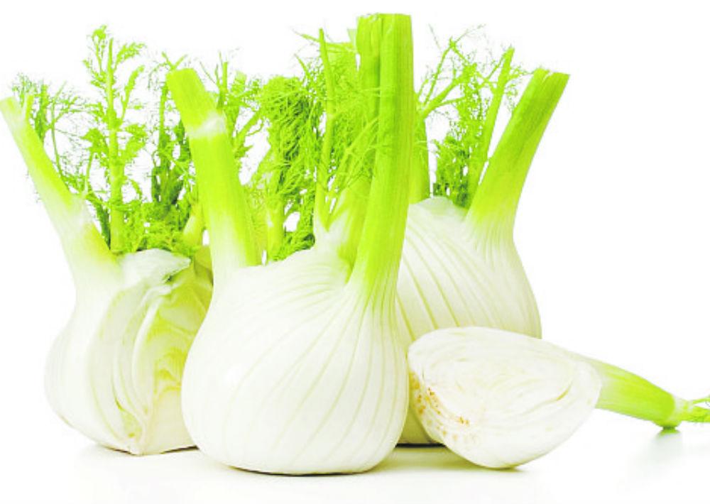 Hinojo (fennel): Se utiliza para tratar los gases, el estreñimiento, la flatulencia y la gastritis. También es diurético y expectorante. Se aconseja mezclar unas gotas con sábila para aliviar la congestión en el pecho. (Shutterstock)