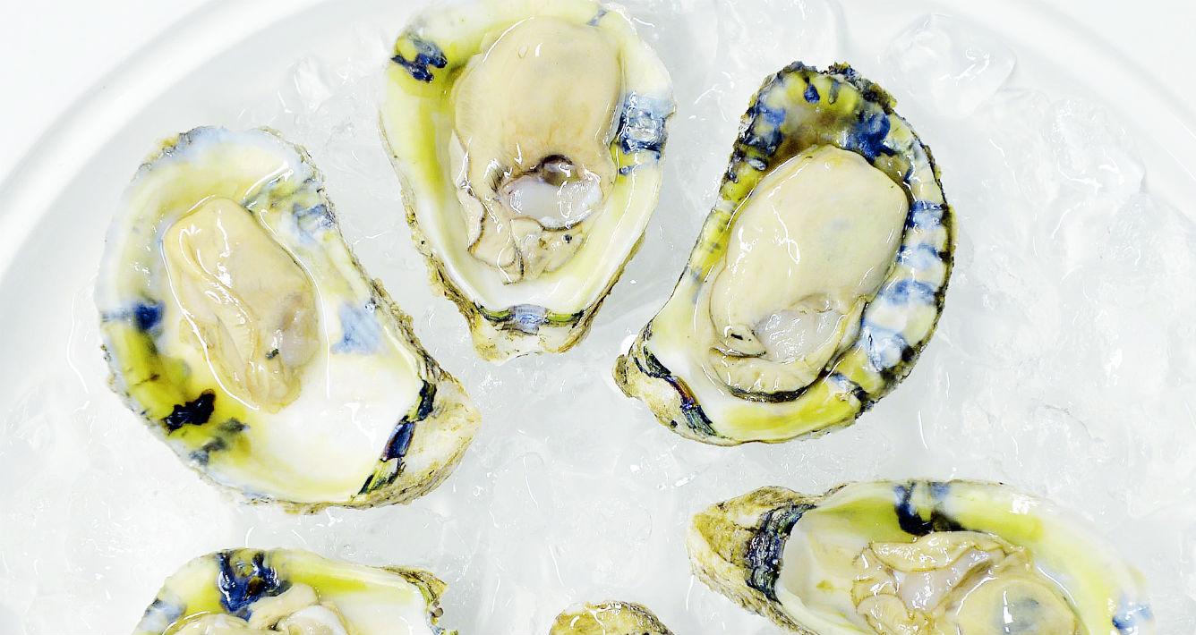 Ostras. ¿Quieres aumentar la producción de colágeno en la dermis? Incluye en tu dieta estos mariscos que debido a que son fuente abundante de zinc aumentan la producción de estos. (Archivo)