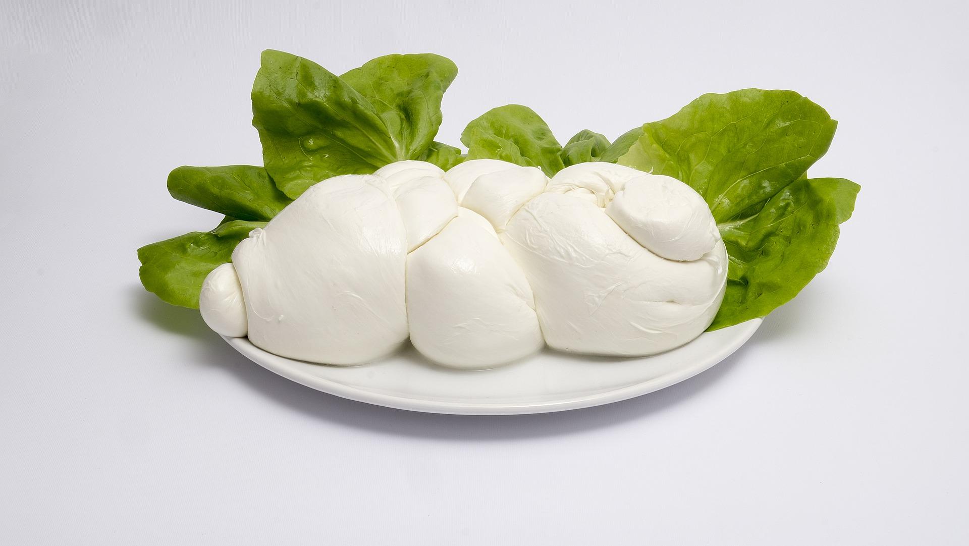 El queso mozzarella es un alimento permitido en la dieta FODMAP. (maxsanna / Pixabay)