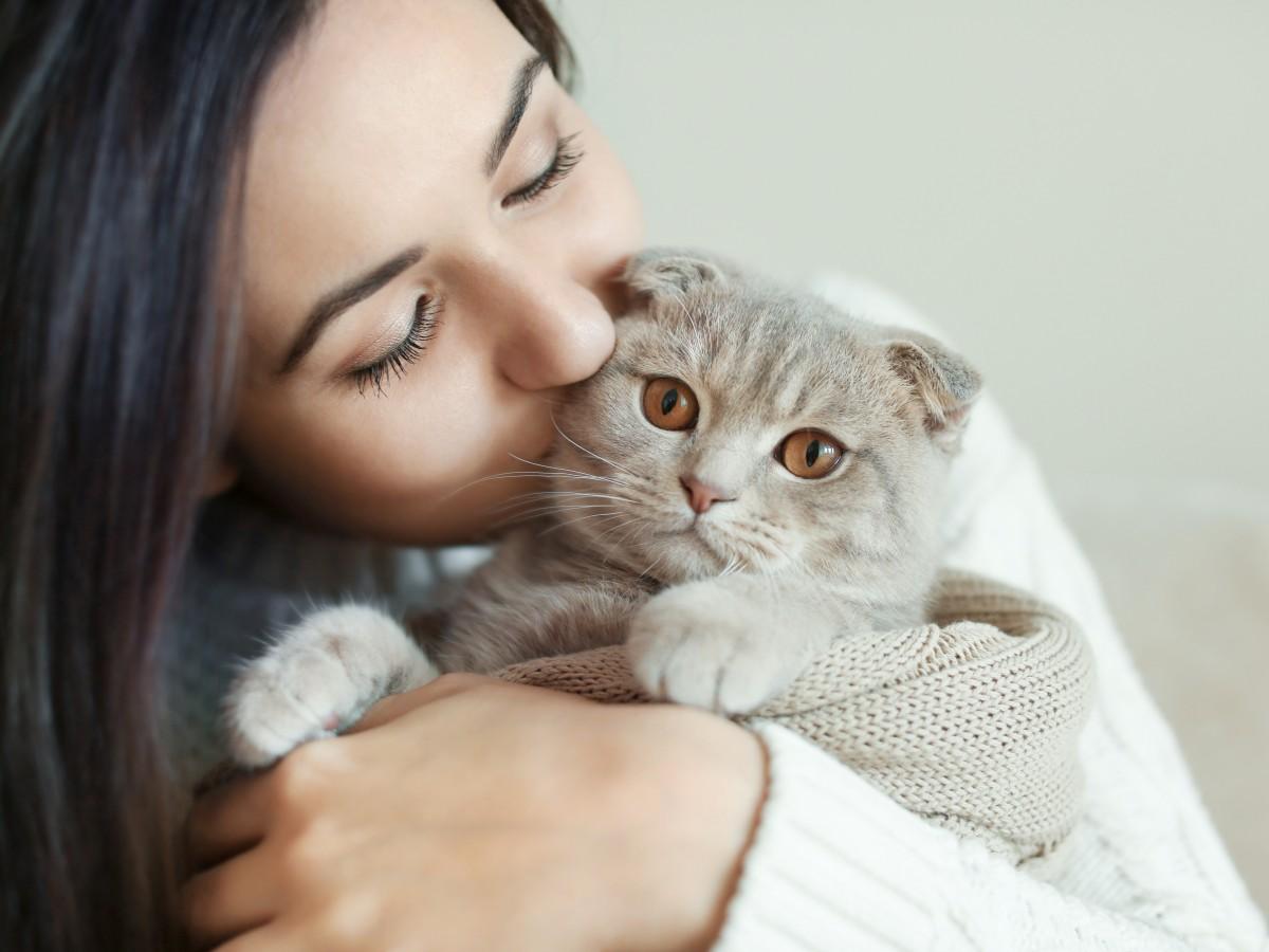 Los gatos también generan vínculos de apego con sus dueños