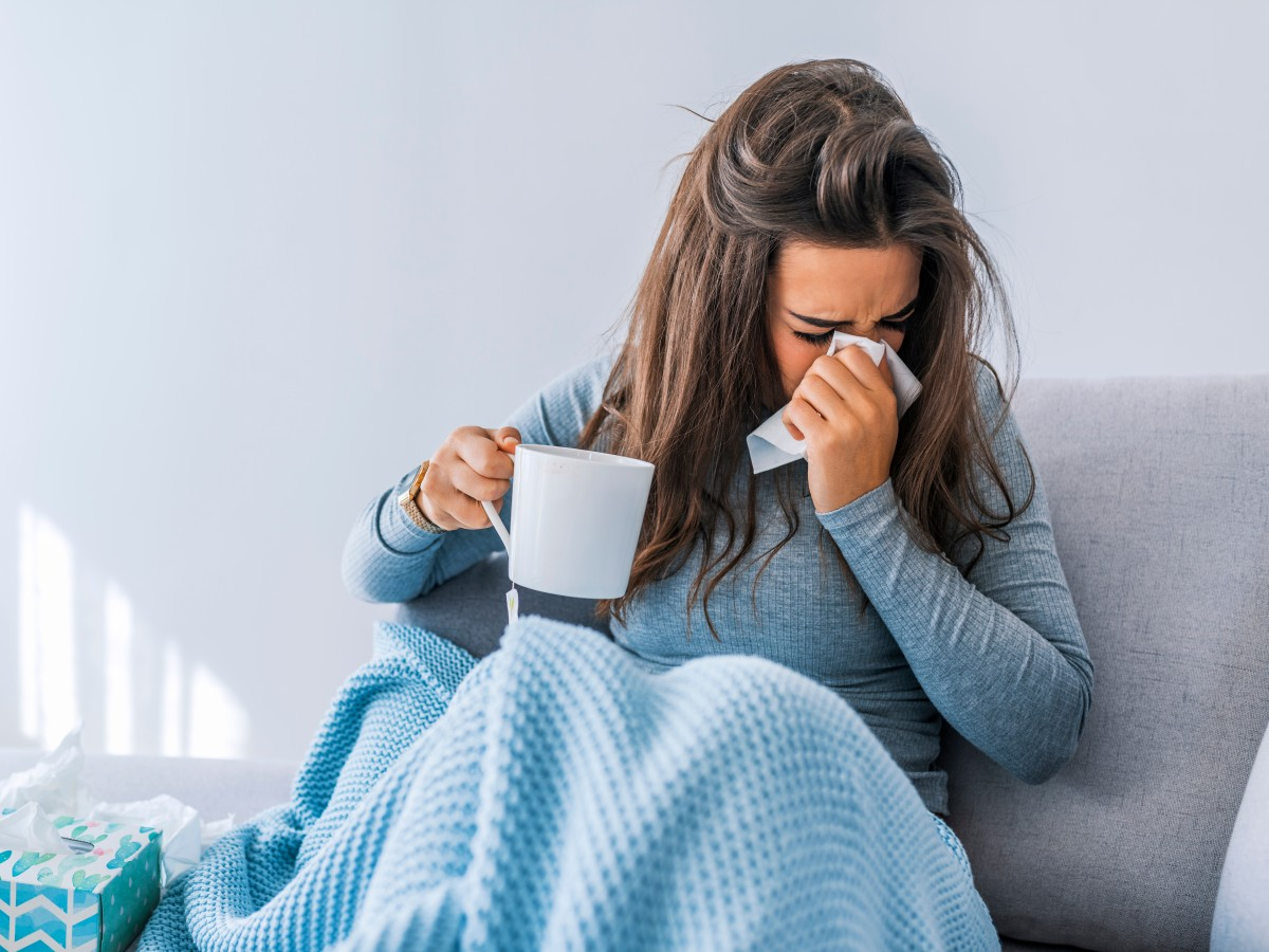 En guardia ante la influenza