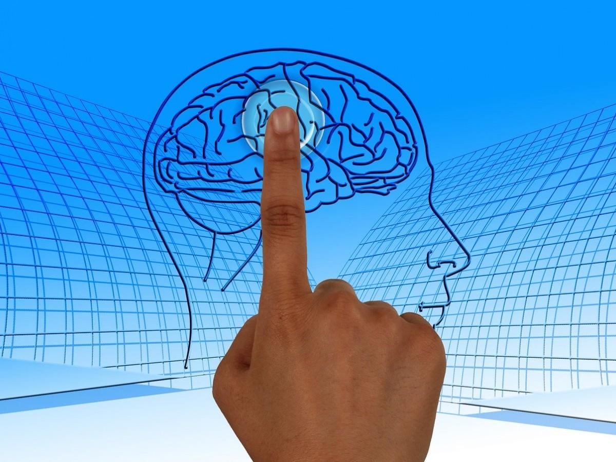 Ejercita tu cerebro