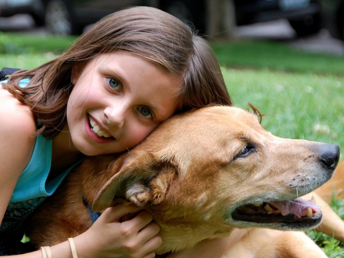 ¿Es verdad que criarse con un perro mejora el sistema inmunológico?