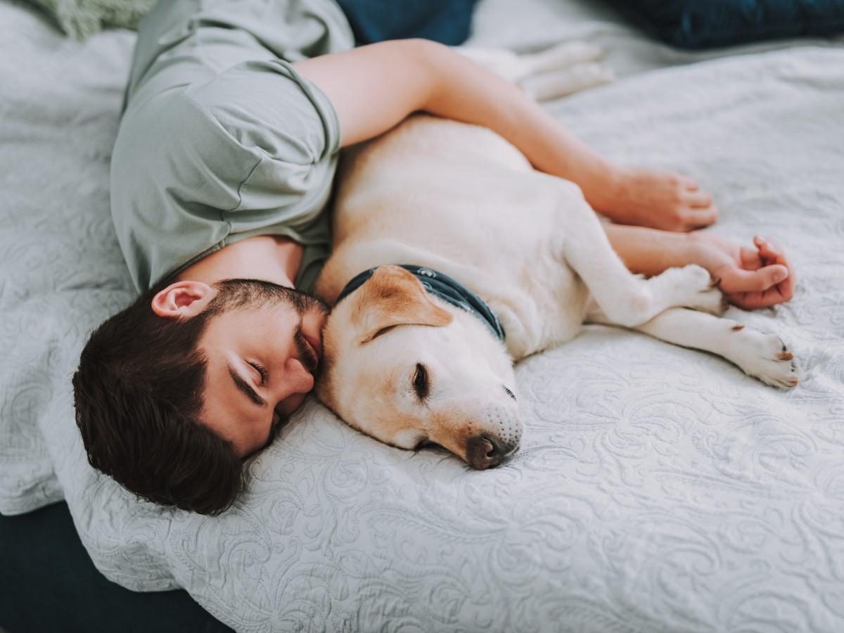 ¿Dormir con el perro es malo? Esto dice la ciencia