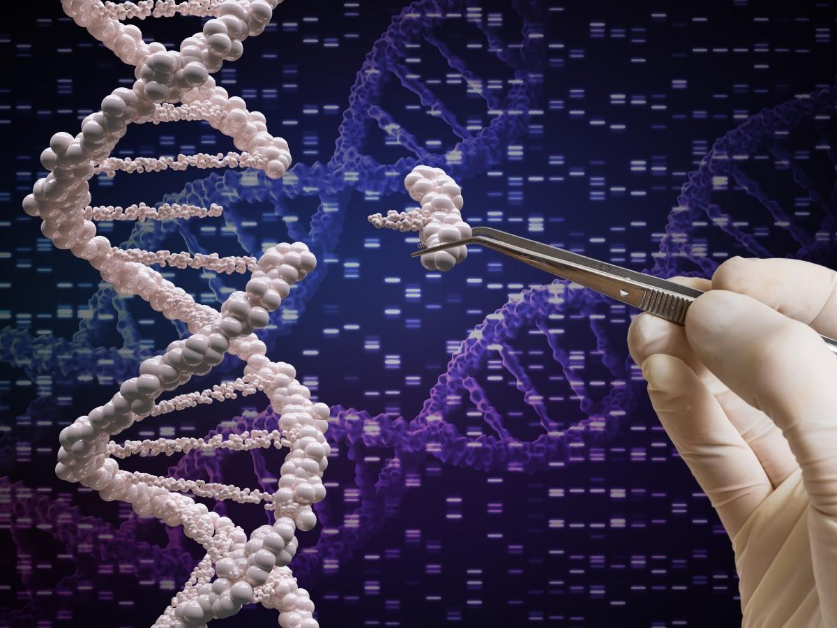 Ensayan por primera vez la edición genética para tratar cáncer