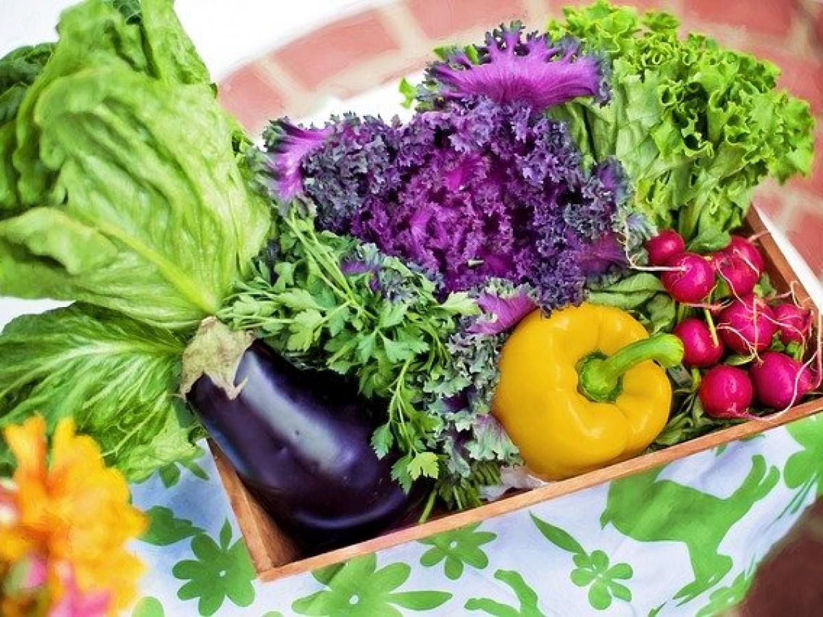 Cómo conservar las verduras frescas por más tiempo