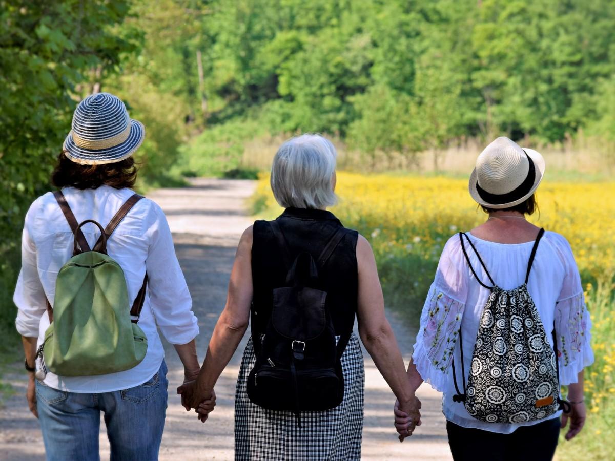 Guía breve de la menopausia