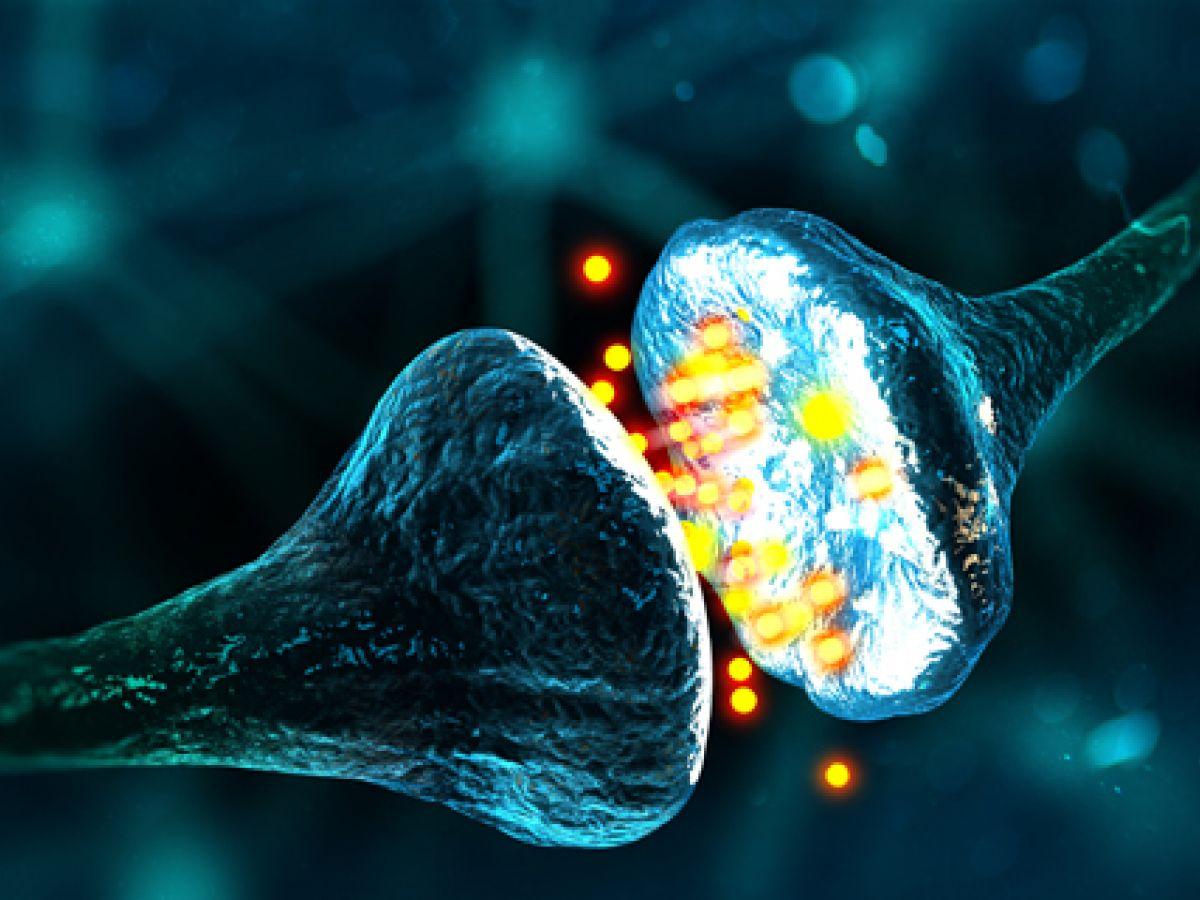 El dolor crónico se esconde en las neuronas