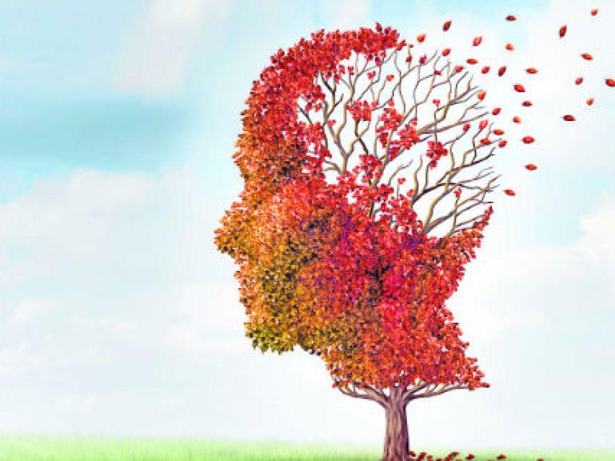 Desequilibrio del pH en el cerebro puede provocar alzhéimer