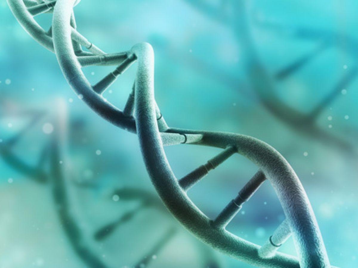 Investigan en Puerto Rico un gen que frena el alzhéimer