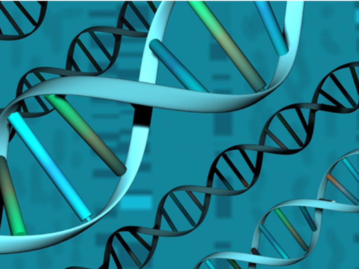 Nuevos hallazgos de la medicina genómica