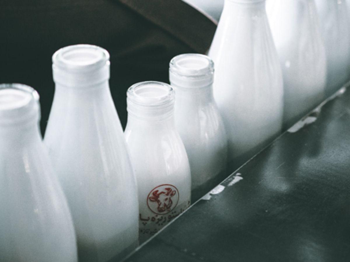 Beneficios y riesgos de la leche cruda