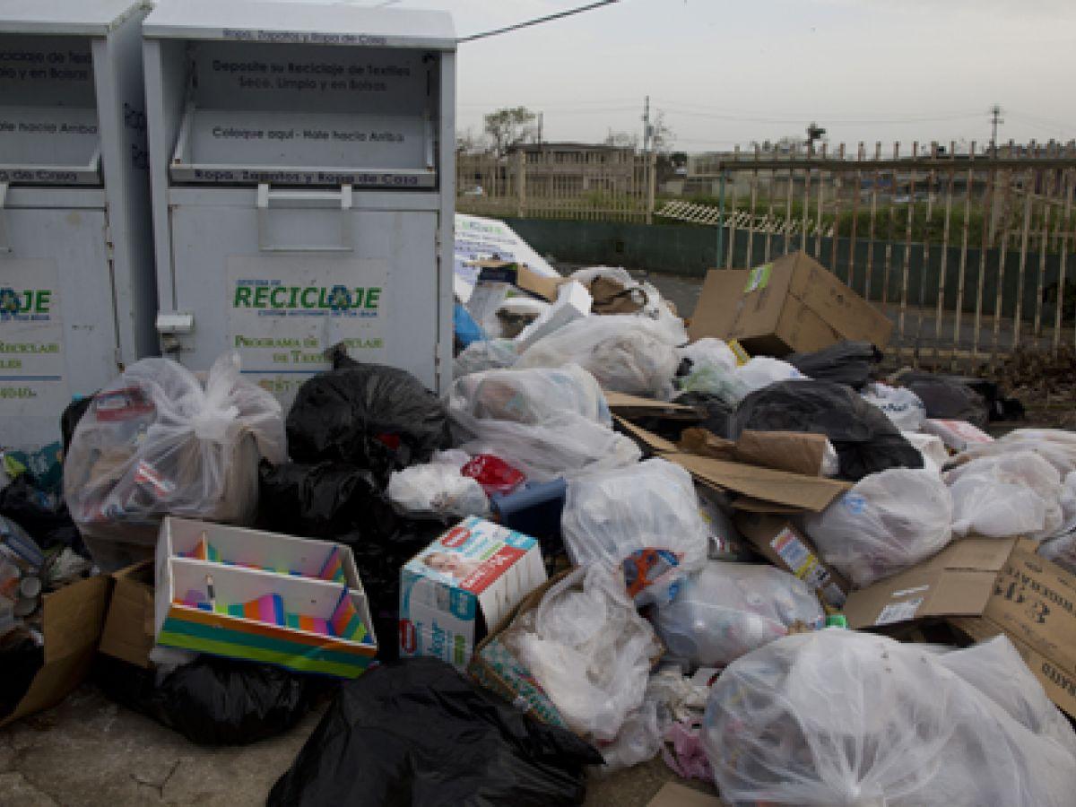 Cuidado con la basura y con las enfermedades trasmitidas por animales