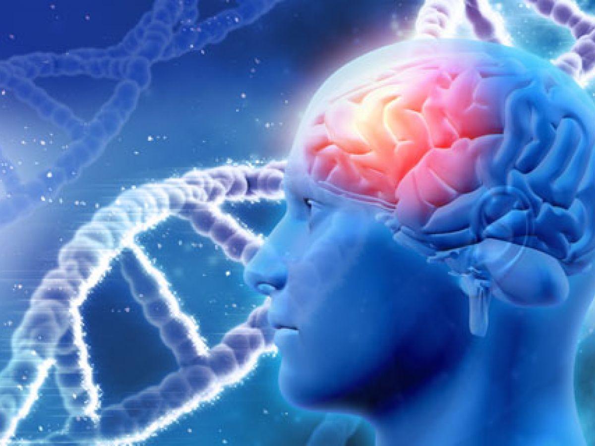 Los genes de la esquizofrenia protegen del alzhéimer