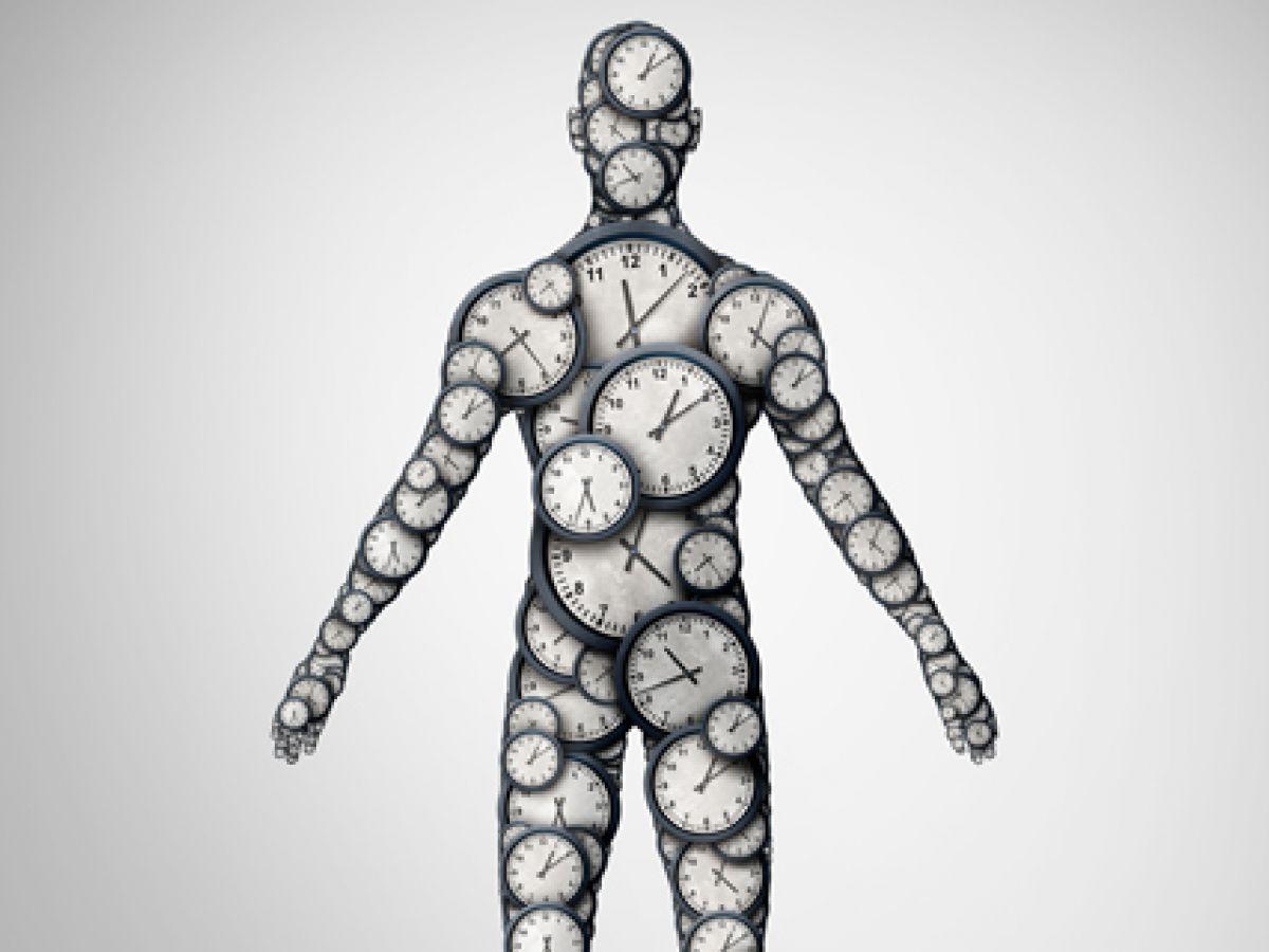 Fármaco promete combatir células cancerosas regulando el reloj circadiano