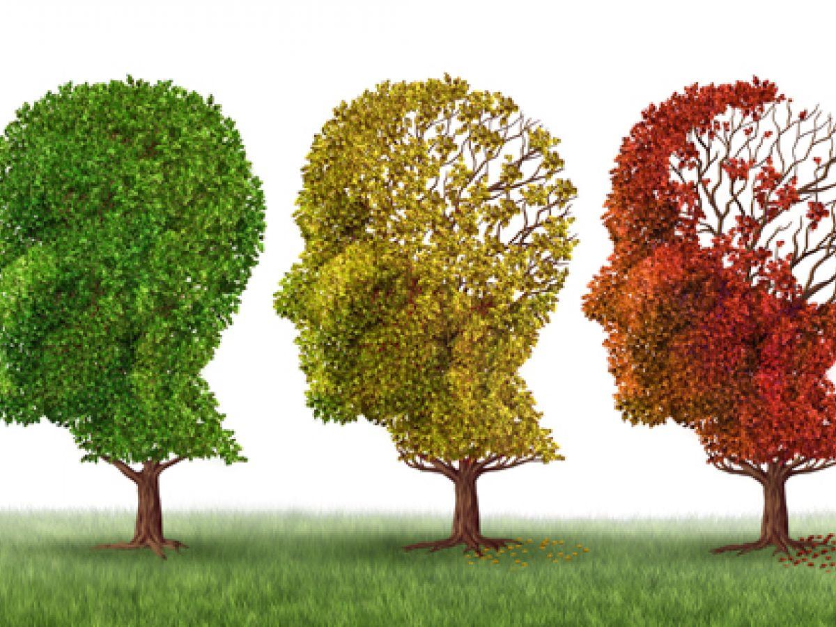 La demencia se disparó en el mundo: aumentó un 117% en 26 años