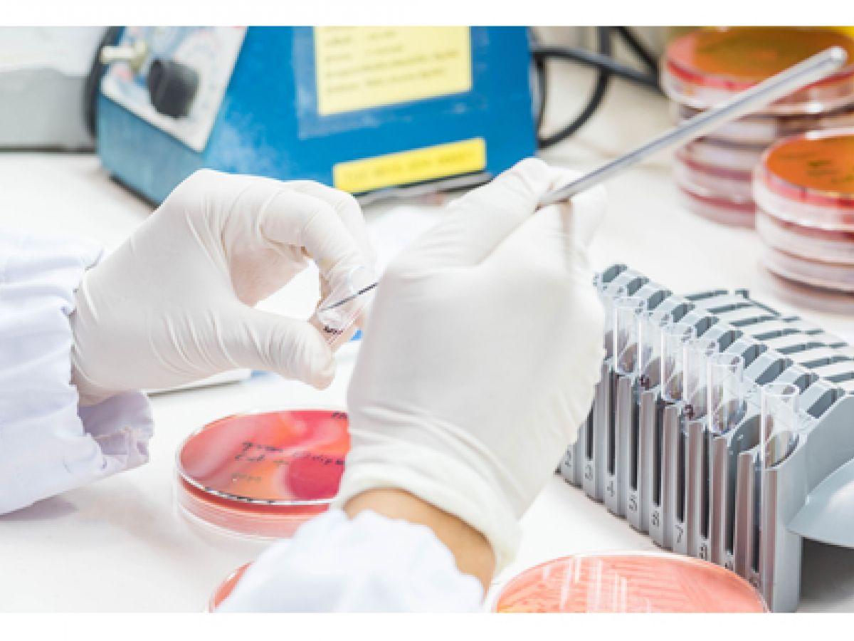 Las enfermedades crónicas son más vulnerables a patógenos resistentes