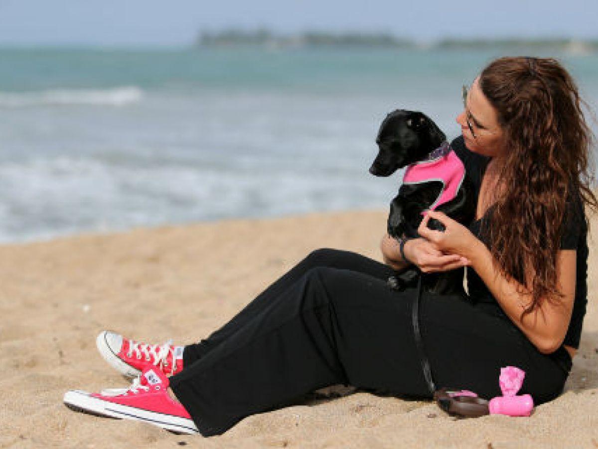 El 99% de los latinoamericanos habla con sus perros