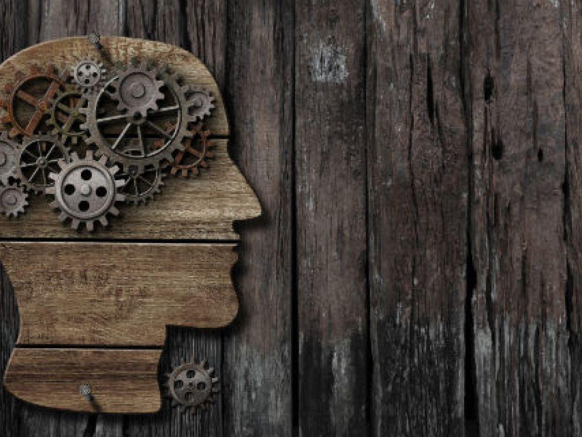 Ponen en duda la forma en que científicos entienden que se almacenan los recuerdos