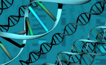 Científicos chinos descubren nuevos datos sobre el origen de los virus del ARN