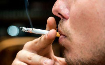 Una dieta rica en antioxidantes ayuda a mitigar efectos del tabaco