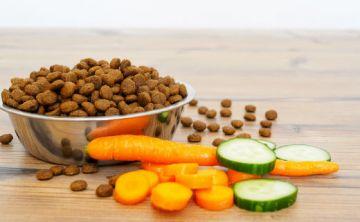 Comida cruda beneficia la salud de perros y gatos