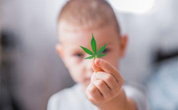 El uso de cannabis medicinal para menores genera controversia en la isla