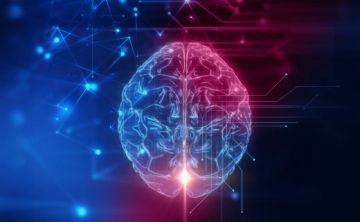 La mitad de mujeres y un tercio de hombres en riesgo de desarrollar enfermedades neurológicas
