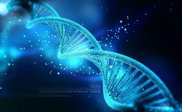 Perfil genético del  paciente de lupus