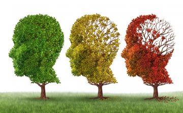Nuevas pistas contra el alzhéimer