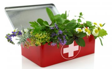 Los beneficios de los aceites esenciales y la aromaterapia