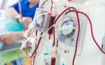 La opción del trasplante de riñón