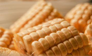 Los carbohidratos que te conviene comer