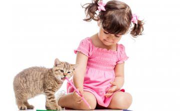 Cuidado holístico de las mascotas