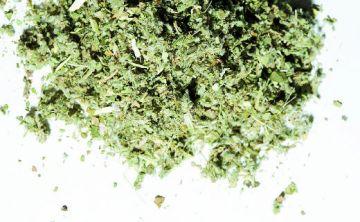 Posibles riesgos de graves hemorragias por marihuana sintética