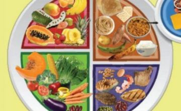 Comisión de nutrición presenta una guía para la sana alimentación