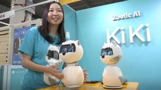Robots sociables: apelan al corazón y prometen aprender de sus dueños